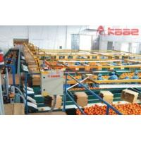 Photoelectrical Fruits and Vegetable Weight/size/color Grading Machine Manufactures