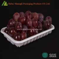 Blister plastic colorful fruit packing tray on sale Manufactures