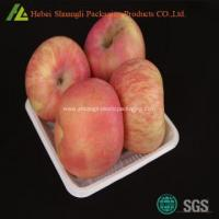 Plastic Fruit pp packing tray Manufactures