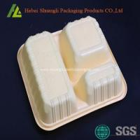 eco friendly plastic disposable food containers Manufactures