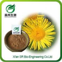 Inulapowder, China Supplier Hot Sale Elecampane Extract, Top Quality Inula Helenium Extract Manufactures