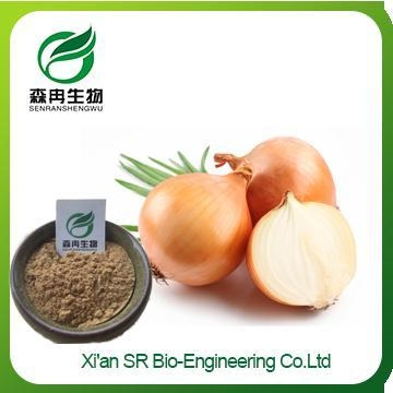 Quality Organic Onion Powder, High Quality Onion Extract, Factory Supply Powdered Onion for sale