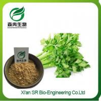 Celery Extract, Factory Supply Celery Juice Powder, Celery Seed Extract Blood Pressure Manufactures