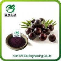 China Acai Berry Powder, Hot Sale Acai Extract, Organic Freeze Dried Acai Powder on sale