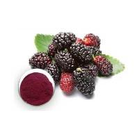 Buy cheap The most favorable price for high quality mulberry extract (anthocyanins) from wholesalers