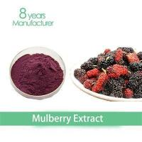 100% Natural dyes mulberry fruit extract powder Manufactures