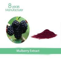 GMP factory purify skin10% 1-DNJ mulberry leaf powder Manufactures
