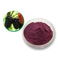 Mulberry Leaf P.E mulberry leaf extract mulberry leaf powder Manufactures