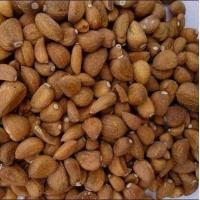 Roasted Garlic Cloves Manufactures