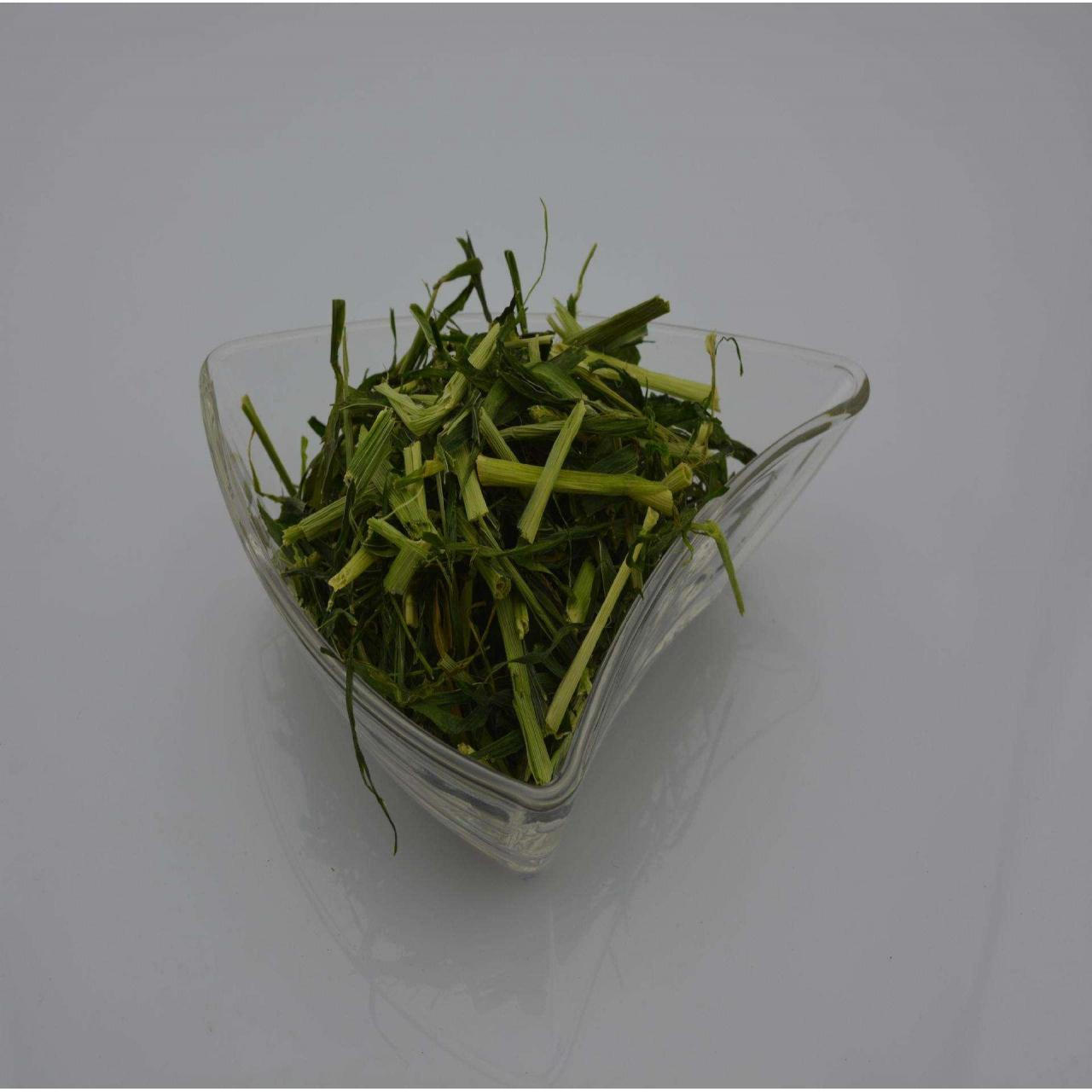 Dried Barley Grass Manufactures