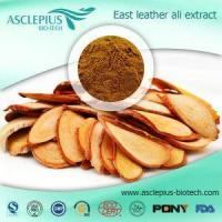 Tongkat Ali Root Extract Powder Supplement Supplier Wholesale Manufactures