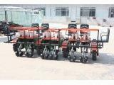 2ZQ-6-seedling transplanter
