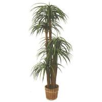 Silk Plants - Pineapple Tree Manufactures