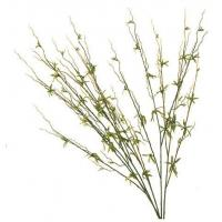 Buy cheap Silk Plants - Plum Leaves from wholesalers