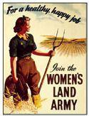 Buy cheap Culture Womens Land Army from wholesalers