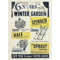 Buy cheap Culture 6 Stars from Winter Garden from wholesalers