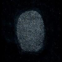 Buy cheap Regular Silk Gray Fingerprint Powder from wholesalers