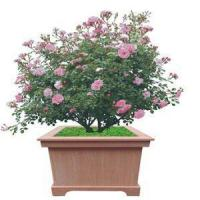 Buy cheap Environmental Protection Sun-Proof Solid Flower Box For Urban Use from wholesalers