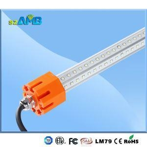 Quality IP65 LED Tube Poultry Lights for sale