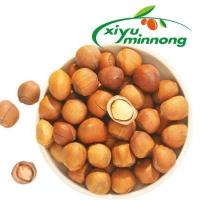 Hazelnuts Nuts in Shell Salted and Roasted Organic Bulk for Sale with Low Price Manufactures