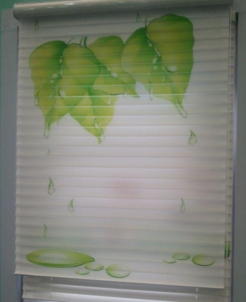 Quality Printed Fabrics For Shangrila Blinds Triple Sheer Shades Silhouette for sale