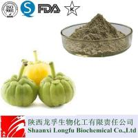 Pure Garcinia Cambogia Extract Hydroxycitric Acid HCA For Weight Loss Manufactures
