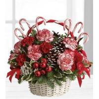Candy Cane Christmas - T118-3A Manufactures