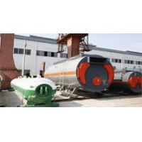 biomass boiler systems Manufactures