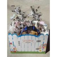Welcome Home Dog Gift Basket - Shortys Gourmet Treats Manufactures