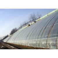 Sunlight greenhouse Manufactures