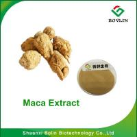 Maca Extract Benefits for Men/Bolin Supply Pure Natural Maca Extract Powder with Best Quality Manufactures