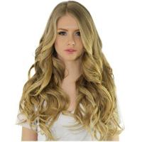 Hazelnut Dirty Blonde 120 Gram Clip In Hair Extensions Manufactures