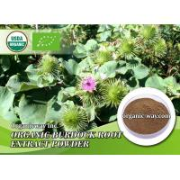 Organic burdock root extract powder Manufactures