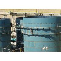 SJ Series Double-impeller Leaching Tank Manufactures