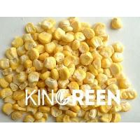 China Freeze dried products Sweet corn whole on sale