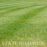 Grass Seed State Roadside Lawn Mixture Manufactures