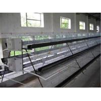 Chickens Cage Manufactures