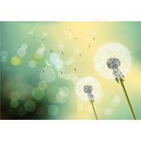 Mold Resistant Faux Stone Interior Wall Panels Dreamy Dandelion In Midsummer Manufactures