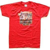 Buy cheap Boys T-Shirts AP6293c from wholesalers