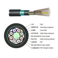 Loose jacket non-metallic reinforced core ordinary armored cable(GYFTY53)