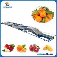 Drum Type Size Grading Round Fruits and Vegetable Sorting Machine Manufactures