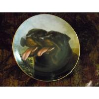 Quality Art Glass Danbury Mint collector plate Dynamic Duo from Rottweillers series for sale