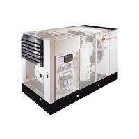 China Ingersoll Rand screw air compressor on sale