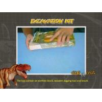 Sml.Beetle fossil Excavation Kit/Dig it Out Toys