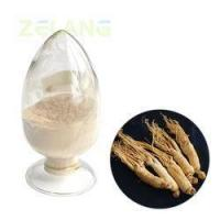 Ginseng Root Extract 1%~5% Sale Manufactures