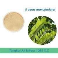 China bulk Tongkat Ali Root Extract 20:1 on sale