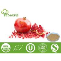 Plant Extracts Pomegranate Extract - Polyphenols 40%,45%;Punicalagins 20%-40%;Ellagic Acid 40%-90% Manufactures