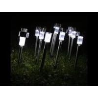 Solar LED Path Light Outdoor Garden Lawn White Stainless Steel Spot Lamp Manufactures
