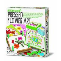 Quality 4M Green Creativity Pressed Flower Art from Great Gizmos for sale