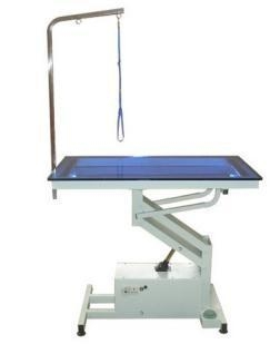 China Pet Grooming Equipment Electric grooming table SGT13